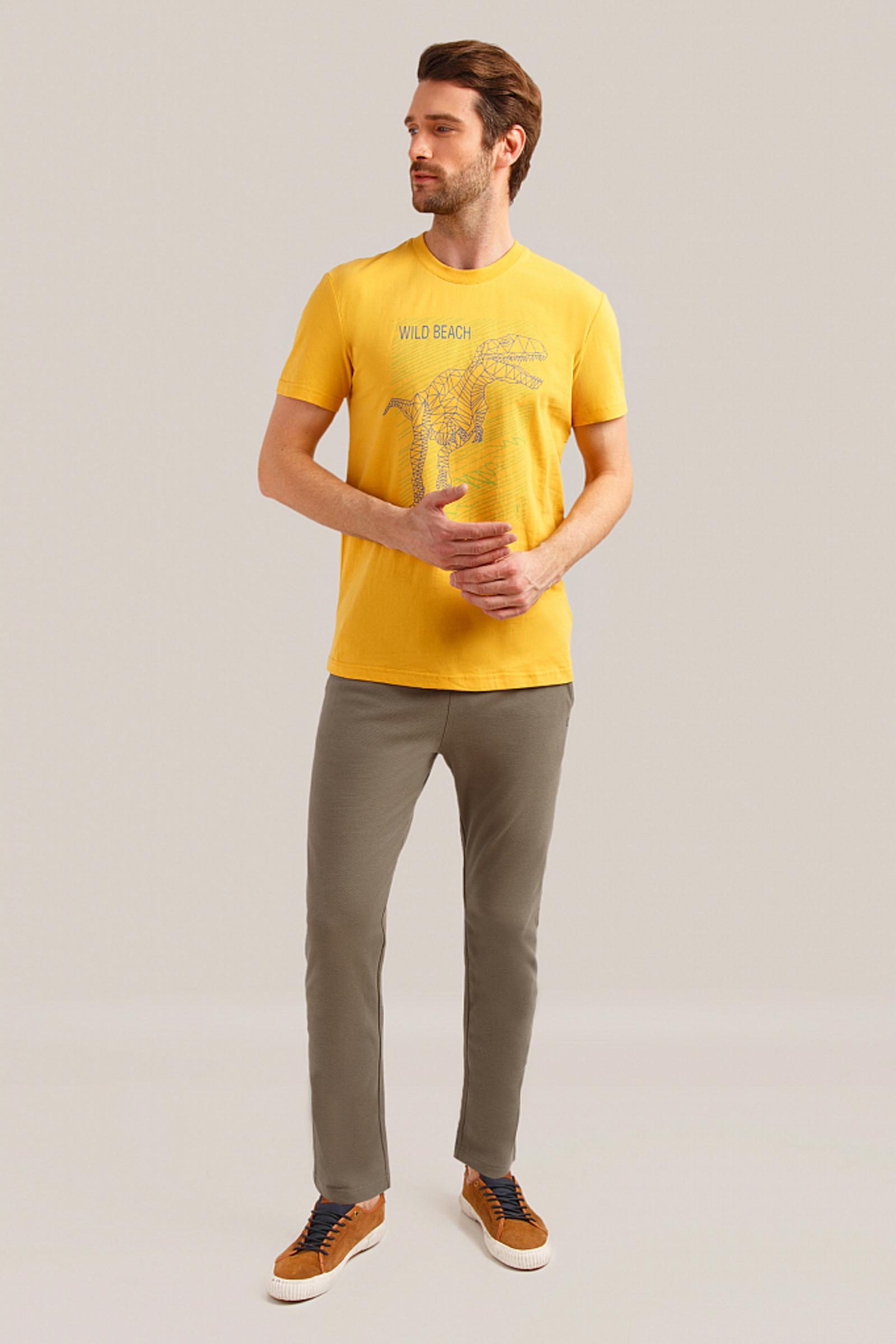 Мужские брюки FiNN FLARE S19-42003